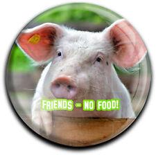 metALUm runder Acrylmagnet mit starkem Neodym - Magnet Schwein #1308011