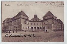 Görlitz Neue höhere Lehranstalten    1917 Feldpost  Oberlausitz