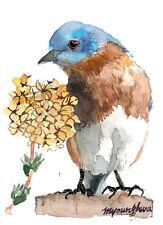 ACEO print of an original watercolor- Quiet contemplation,Bluebird ACEO art card