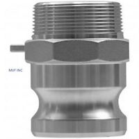 """1/2"""" Type F Camlock Male Adapter x Male NPT Stainless Hose Fitting <F050SS304"""