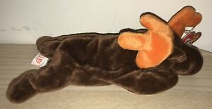 BNWT! TY Beanie Baby Chocolate the Moose DOB April 27th 1993 (made in Indonesia)