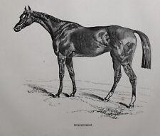 1831 ANTIQUE FARRIER HORSE PRINT ~ INHERITRESS