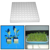 2*Sponge Cubes Hydroponic Grow Media Soilless Cultivation System Gardening Tool