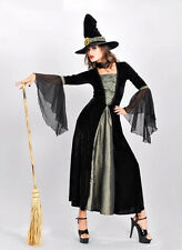 New Womens Wicked Witch Magic Grey Halloween Costume Fancy Party Dress ladcos26