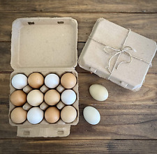 Vintage Blank Egg Cartons Classic 3x4 Style Holds 12 Large Eggs Sturdy Design