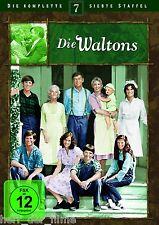 DIE WALTONS, die komplette 7. Staffel (Season 7) 6 DVDs