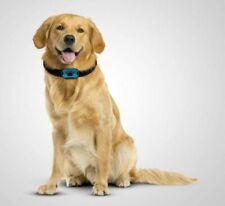 Collare addestramento cane cani anti abbaio abbaiare - legale ed innocuo