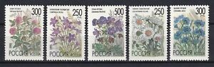 Russia 1995 Flowers 5 MNH Stamps