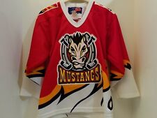 Rare Vintage Wchl Phoenix Mustangs Hockey Jersey Boys Small/Medium