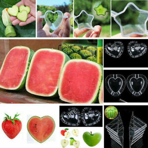 UK Fruit Vegetable Growth Shaping Mold Growing Forming Mould Fun Shape Planting