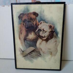 Vintage Art Print on Wood English Bull Dogs Plaque 1930s