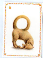 French Postcard Cat Kitten Kitty Feline Alphabet Letter B Name Surname Card