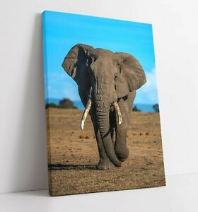 ELEPHANT 3 LARGE CANVAS WALL ART FLOAT EFFECT/FRAME/PICTURE/POSTER PRINT-GREY