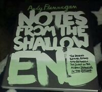 Notes from the Shallow End: Andy flannagan BRAND NEW  Christian mental health