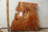 Natural Wood Slab Coffee Table DIY Tabletop Live Edge Big Leaf Maple Burl 3456m1