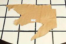 """Champagne Landing"" Tan Scrap Leather Hide Approx. 4.5 sqft. C27Y26-7"