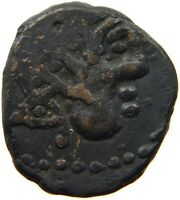 CELTIC ANCIENT CARNUTES AE  #t125 443