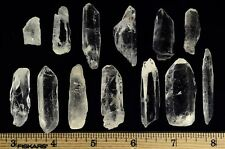Lemurian Seed Crystal Quartz Specimens - 20 Pieces
