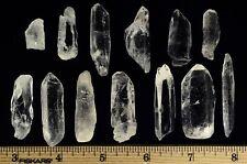 Lemurian Seed Crystal Quartz Specimens - 20 Pieces