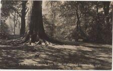 The Duelling Ground Ken Wood, Hampstead Heath London 1928 Degen RP Postcard B793