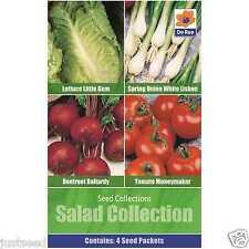 Salad Seed Collection - 4 Varieties - Beetroot - Onion - Lettuce - Tomato