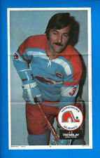 J. C. TREMBLAY 1973-74 O-Pee-Chee WHA Poster Quebec Nordiques