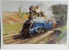 """MALLARD"" Steam Train by Terence Cuneo,Print"