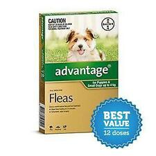 Advantage for Small Dogs up to 4kg Green 12 Pack for fleas