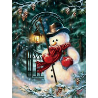Christmas DIY 5D Diamond Painting Paints Craft Embroider Cross Stitch Home New.