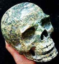 "7.0"" Yellow TURQUOISE Skeleton,Crystal Healing SKULL"