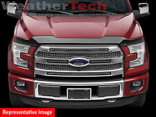 WeatherTech Low Profile Hood Protector for Ford Edge - 2015-2018