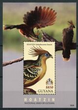Guyana 2018 MNH Hoatzin National Bird of Guyana 1v S/S Coat of Arms Birds Stamps