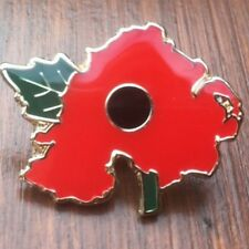 NORTHERN IRELAND ULSTER LAPEL PIN BADGE RUC UDR POPPY RIR REMEMBRANCE BMW PARA