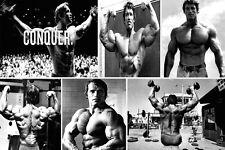 More details for superb arnold schwarzenegger #3 canvas quality bodybuilding collage free p&p
