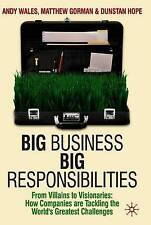 Big Business, Big Responsibilities: From Villains to Visionaries: How Companies
