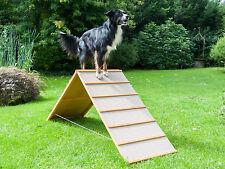 Dog Agility A-Wand, antirutsch Belag, Hundesport, Hundetraining, Hund, A-Wall