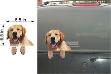 GOLDEN RETRIEVER DOG VINYL  PEEKER DECAL  STICKER FOR CAR WINDOW