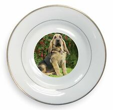 More details for bloodhound dog gold rim plate in gift box christmas present, ad-bl1pl