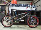 Redline Flight Pro XL custom BMX bike