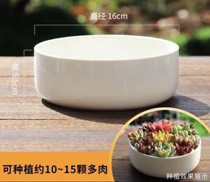 2pcs 16cm Big Round White Premium Ceramic Succulent Arrangement Pots Craft