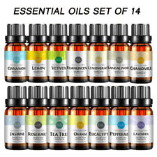 RA Aromatherapy Top 14 Essential Oils Set (100% PURE & NATURAL) Therapeutic