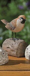 Bewegungsmelder Vogel Spatz