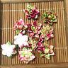 50pcs Resin lotus Flower flatback Appliques For phone/wedding/crafts DIY RL09/