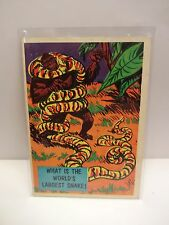 1957 Isolation Booth Card # 11 What Is The World's Largest Snake ?