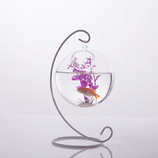 Clear Ball Shape Glass Flower Planter Vase Container Fish Tank Home Decor