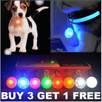 LED Pet Dog Cat Collar Nite Night Light Safety Clip Flashing Neon Pendant NEW