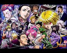 Hunter X Hunter Poster Anime Neferpitou Gon Killua Fight Art Print 16x20 Inches