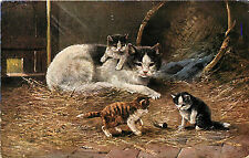 Vintage Postcard A Muller Mama cat and Kittens in a barn