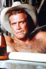 Lee Majors As Colt Seavers The Fall Guy 11x17 Poster Bare Chest & Cowboy Hat