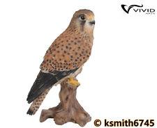 Vivid Arts KESTREL resin ornament animal wild garden bird hawk * NEW 💥